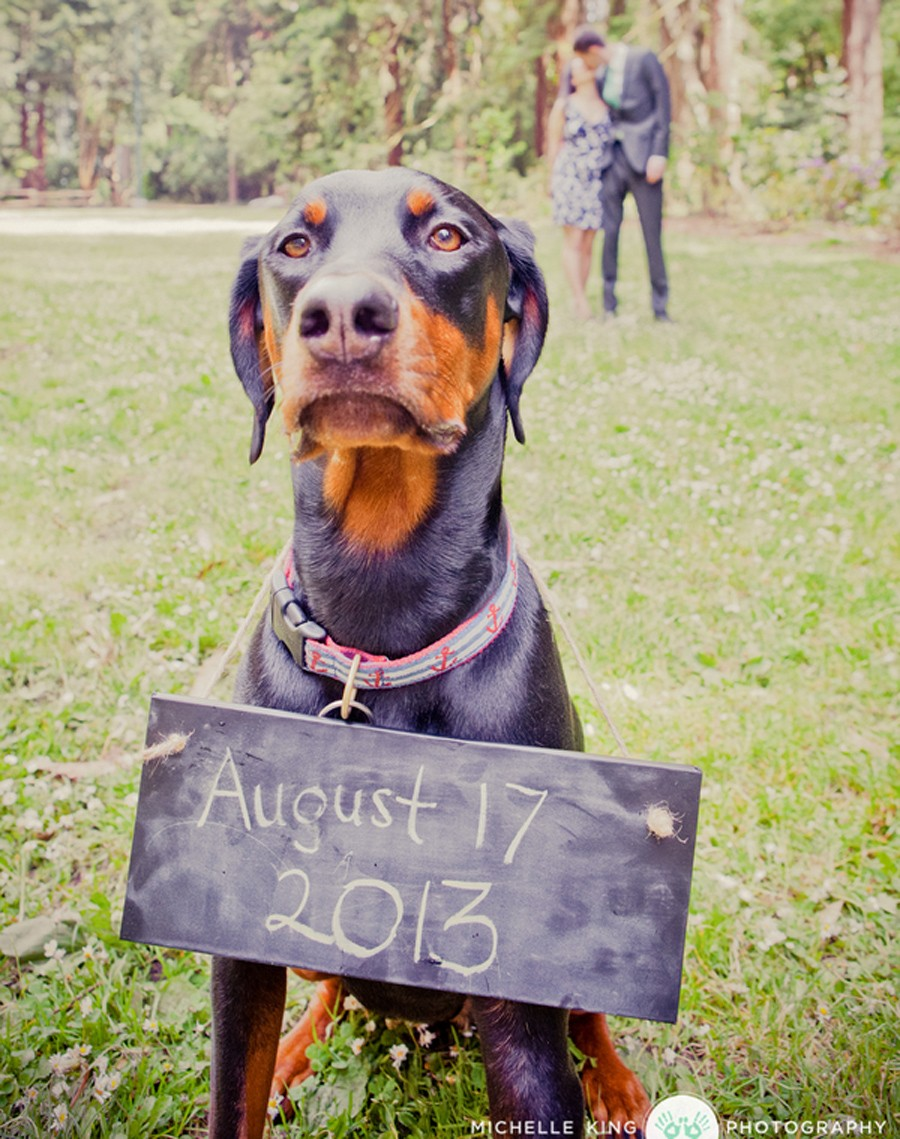 Save the Date Photo Featuring Your Dog